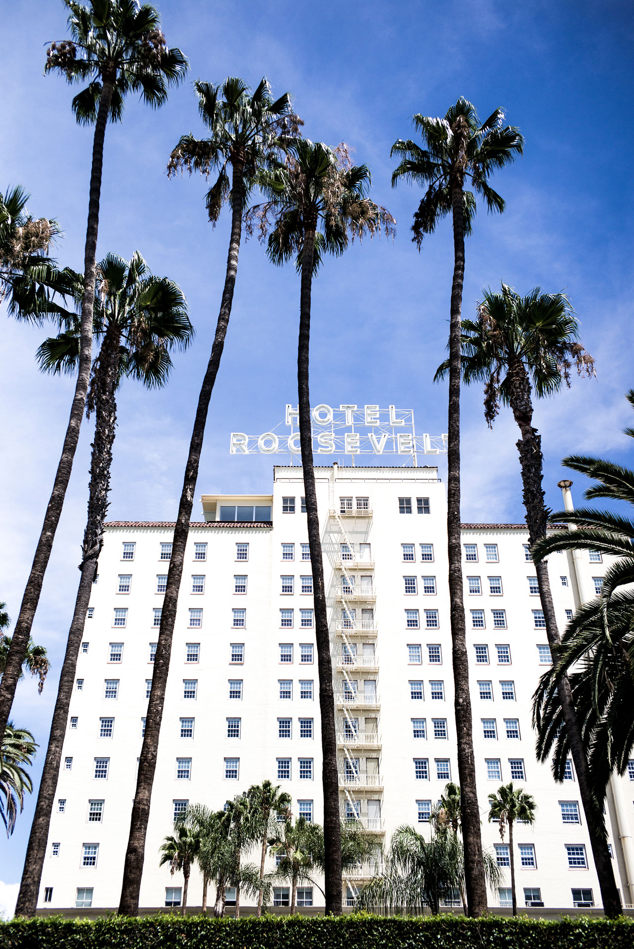 Vulture Festival Is Coming To The Hollywood Roosevelt This