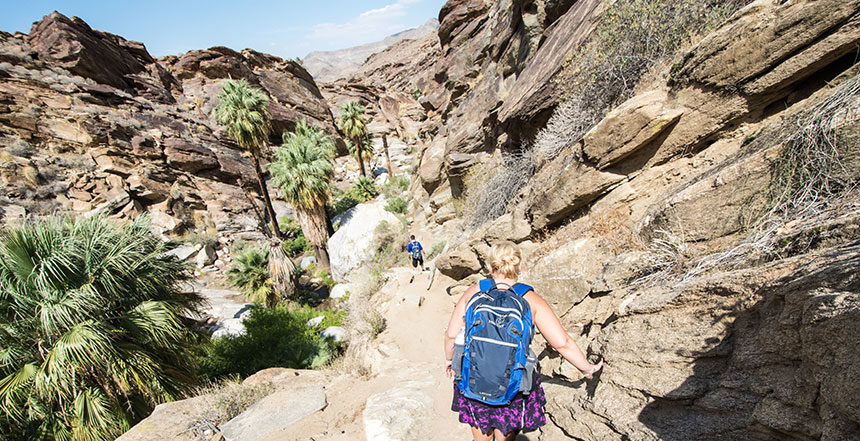 Coachella Valley Hiking Guide