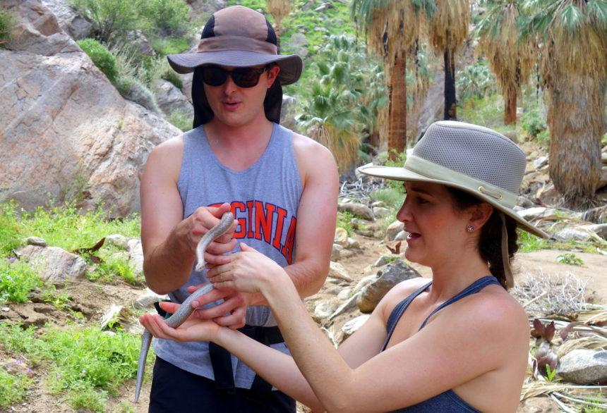 Coachella Hiking Tours