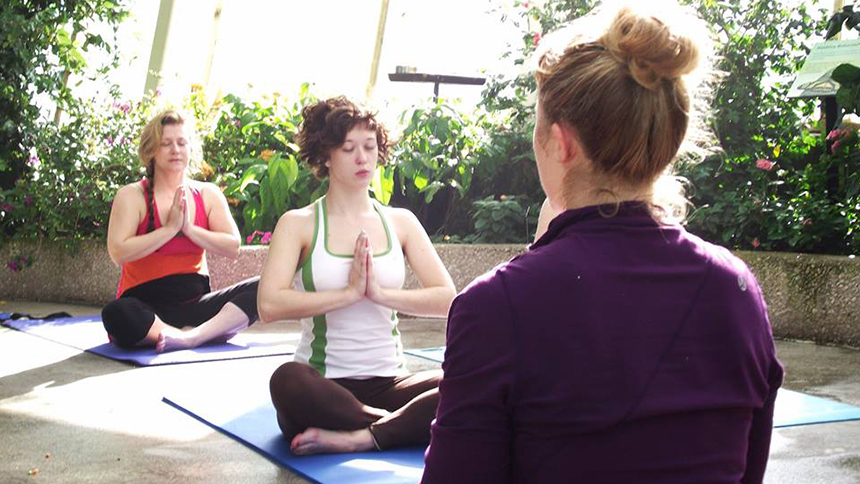 An image of people practicing yoga at the Peggy Notebaert Nature Museum in Chicago