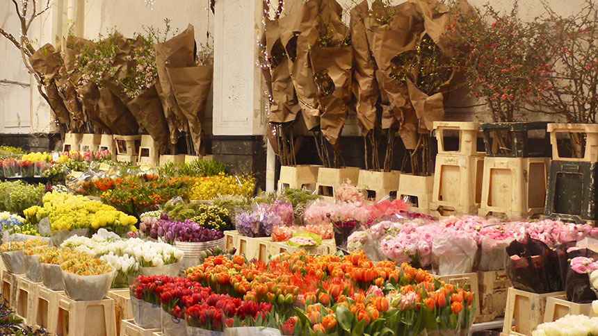 Flower displays at a shop in New York City
